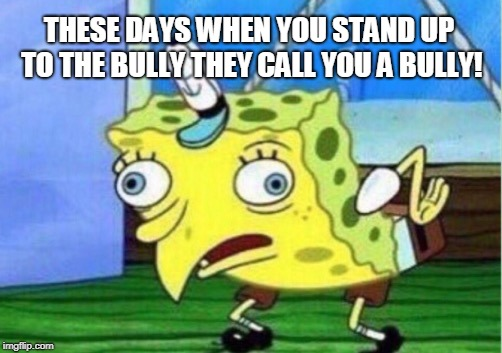 Mocking Spongebob Meme | THESE DAYS WHEN YOU STAND UP TO THE BULLY THEY CALL YOU A BULLY! | image tagged in memes,mocking spongebob | made w/ Imgflip meme maker