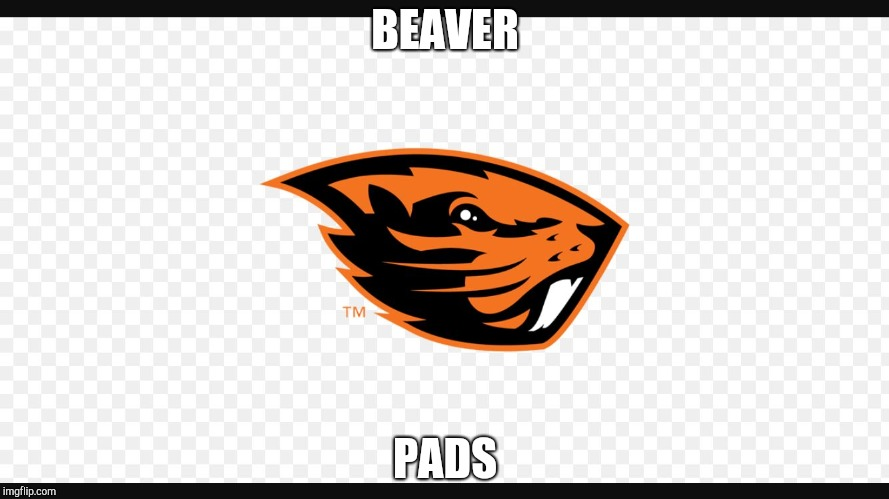 BEAVER PADS | image tagged in beavers suck | made w/ Imgflip meme maker
