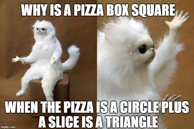 Persian Cat Room Guardian Meme | WHY IS A PIZZA BOX SQUARE WHEN THE PIZZA IS A CIRCLE PLUS A SLICE IS A TRIANGLE | image tagged in memes,persian cat room guardian | made w/ Imgflip meme maker