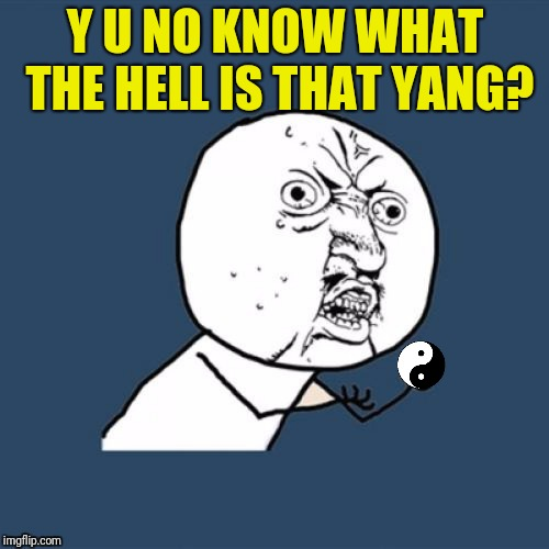 Y U NO KNOW WHAT THE HELL IS THAT YANG? | made w/ Imgflip meme maker