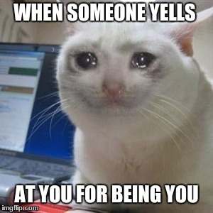 Crying cat | WHEN SOMEONE YELLS AT YOU FOR BEING YOU | image tagged in crying cat | made w/ Imgflip meme maker