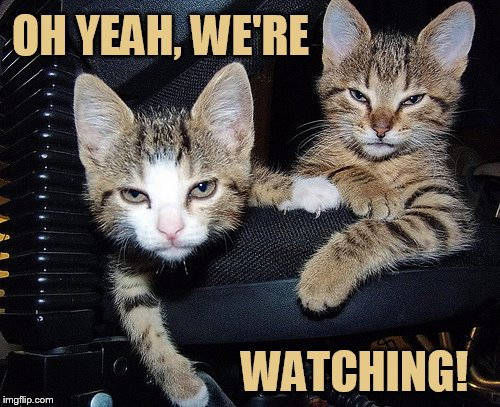 OH YEAH, WE'RE WATCHING! | made w/ Imgflip meme maker