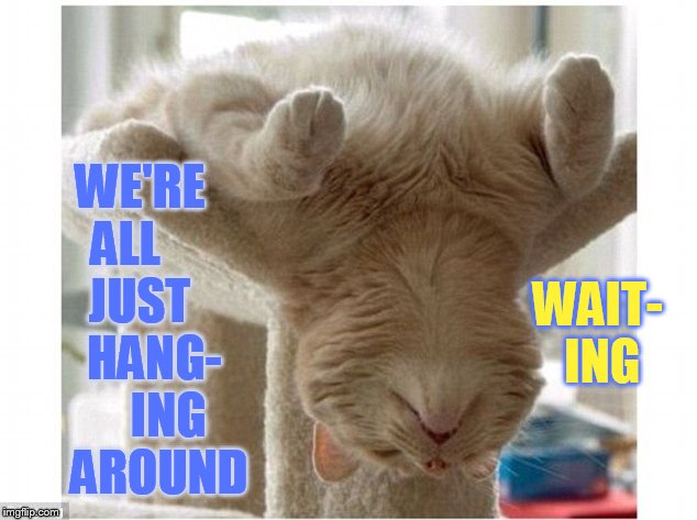 WE'RE ALL      JUST     HANG-      ING    AROUND WAIT- ING | made w/ Imgflip meme maker