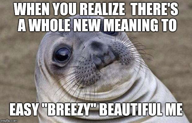 "Awkward Moment Sealion Meme | WHEN YOU REALIZE  THERE'S A WHOLE NEW MEANING TO EASY ""BREEZY"" BEAUTIFUL ME 