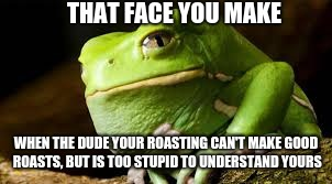 Boi your roasts are trash | THAT FACE YOU MAKE WHEN THE DUDE YOUR ROASTING CAN'T MAKE GOOD ROASTS, BUT IS TOO STUPID TO UNDERSTAND YOURS | image tagged in frog,roast | made w/ Imgflip meme maker