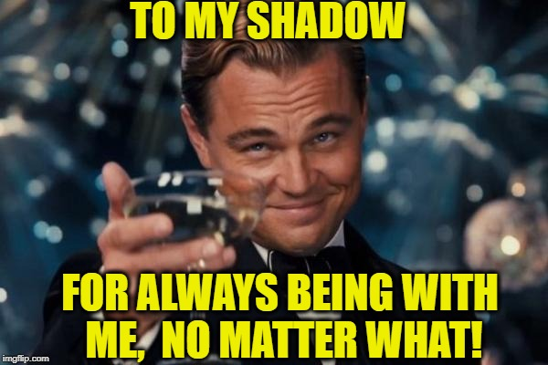 Leonardo Dicaprio Cheers Meme | TO MY SHADOW FOR ALWAYS BEING WITH ME,  NO MATTER WHAT! | image tagged in memes,leonardo dicaprio cheers | made w/ Imgflip meme maker
