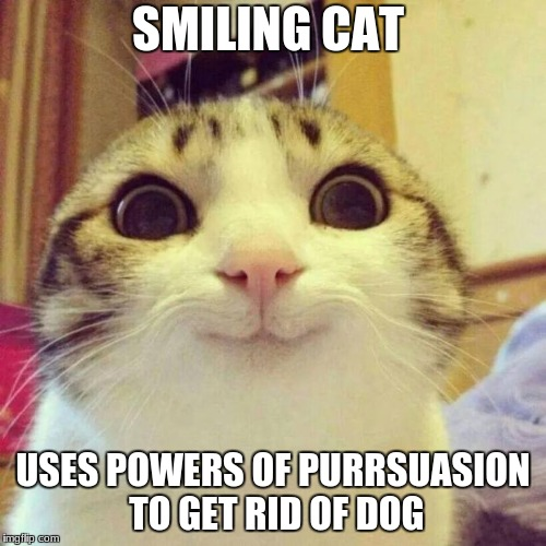 SMILING CAT USES POWERS OF PURRSUASION TO GET RID OF DOG | image tagged in smiling cat meme | made w/ Imgflip meme maker