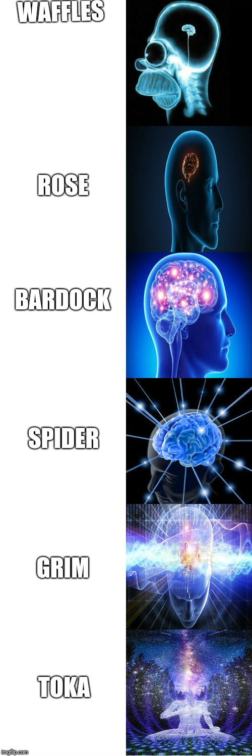 Expanding Brain | WAFFLES ROSE BARDOCK SPIDER GRIM TOKA | image tagged in expanding brain | made w/ Imgflip meme maker