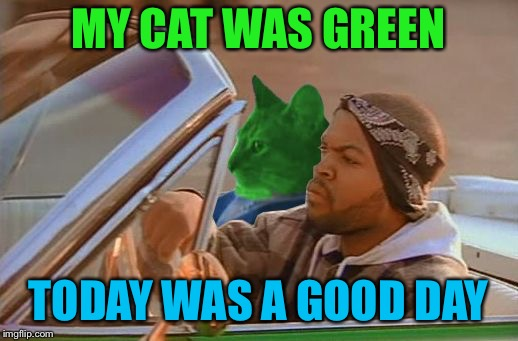 No Radiation Today | MY CAT WAS GREEN TODAY WAS A GOOD DAY | image tagged in driving raycat,memes,today was a good day | made w/ Imgflip meme maker