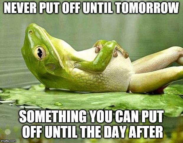 Lazy frog | NEVER PUT OFF UNTIL TOMORROW SOMETHING YOU CAN PUT OFF UNTIL THE DAY AFTER | image tagged in lazy frog | made w/ Imgflip meme maker