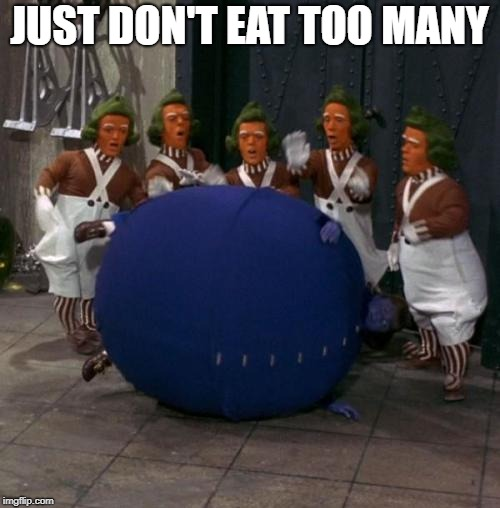 JUST DON'T EAT TOO MANY | made w/ Imgflip meme maker