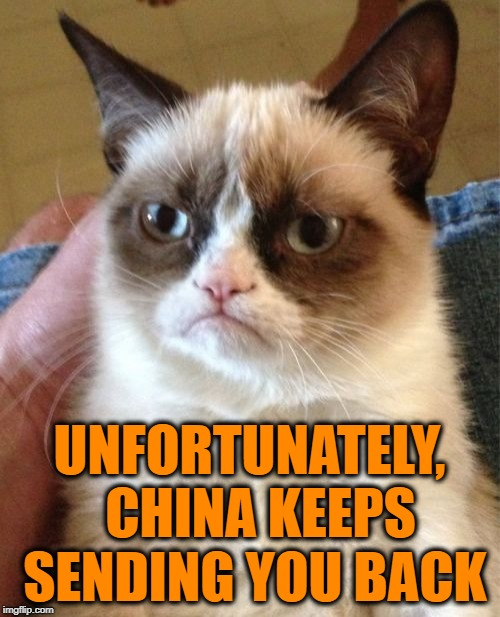 Grumpy Cat Meme | UNFORTUNATELY,  CHINA KEEPS SENDING YOU BACK | image tagged in memes,grumpy cat | made w/ Imgflip meme maker