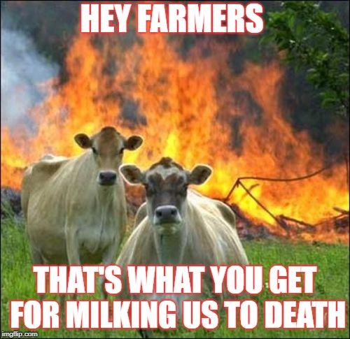 Evil Cows Meme | HEY FARMERS THAT'S WHAT YOU GET FOR MILKING US TO DEATH | image tagged in memes,evil cows | made w/ Imgflip meme maker