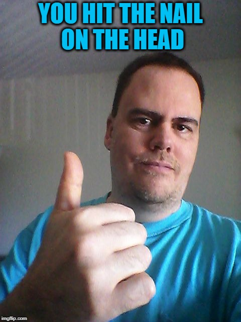Thumbs up | YOU HIT THE NAIL ON THE HEAD | image tagged in thumbs up | made w/ Imgflip meme maker