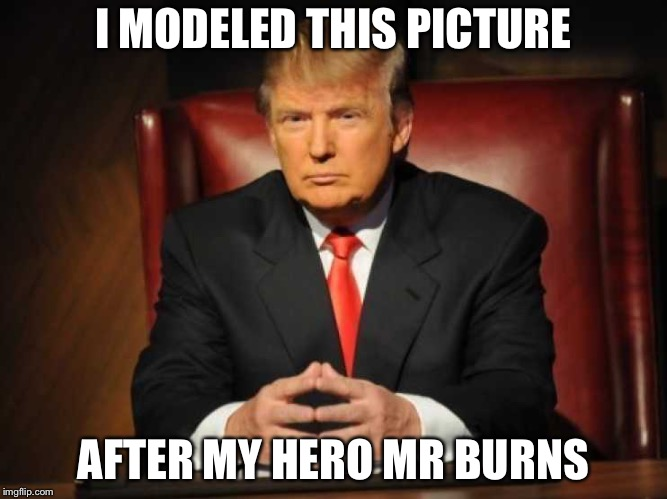 Trump | I MODELED THIS PICTURE AFTER MY HERO MR BURNS | image tagged in trump | made w/ Imgflip meme maker