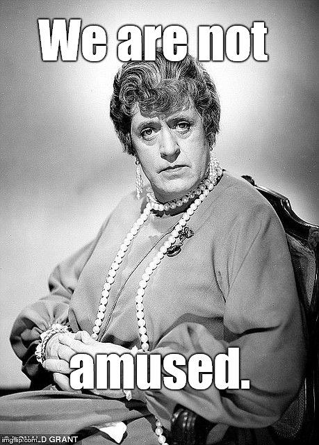 Alastair Sim as Dame | We are not amused. | image tagged in alastair sim as dame | made w/ Imgflip meme maker