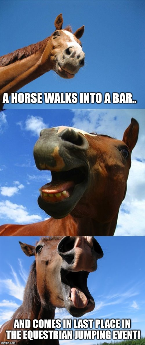 A horse walks into a bar.. | A HORSE WALKS INTO A BAR.. AND COMES IN LAST PLACE IN THE EQUESTRIAN JUMPING EVENT! | image tagged in just horsing around,a horse walks into a bar | made w/ Imgflip meme maker