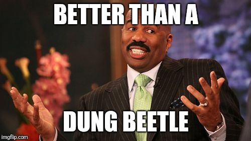 BETTER THAN A DUNG BEETLE | made w/ Imgflip meme maker