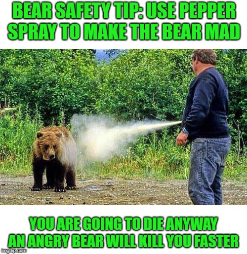 bear safety tip: Use pepper spray to make the bear mad  | BEAR SAFETY TIP: USE PEPPER SPRAY TO MAKE THE BEAR MAD YOU ARE GOING TO DIE ANYWAY AN ANGRY BEAR WILL KILL YOU FASTER | image tagged in bear,pepper spray cop | made w/ Imgflip meme maker