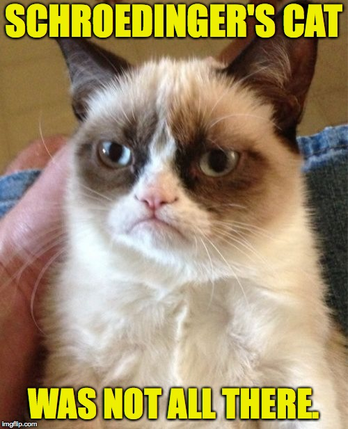 Sometimes you feel like a cat.  Sometimes you don't. | SCHROEDINGER'S CAT WAS NOT ALL THERE. | image tagged in memes,grumpy cat,schrodinger's cat,quantum physics | made w/ Imgflip meme maker
