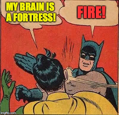 Batman Slapping Robin Meme | MY BRAIN IS A FORTRESS! FIRE! | image tagged in memes,batman slapping robin | made w/ Imgflip meme maker