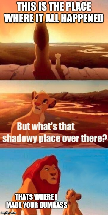 Simba Shadowy Place Meme | THIS IS THE PLACE WHERE IT ALL HAPPENED THATS WHERE I MADE YOUR DUMBASS | image tagged in memes,simba shadowy place | made w/ Imgflip meme maker