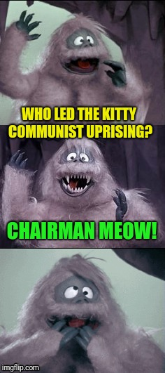 A Bumble Joke | WHO LED THE KITTY COMMUNIST UPRISING? CHAIRMAN MEOW! | image tagged in bumble's joke | made w/ Imgflip meme maker