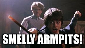 From The Book of Misheard Spells | SMELLY ARMPITS! | image tagged in harry potter spell | made w/ Imgflip meme maker