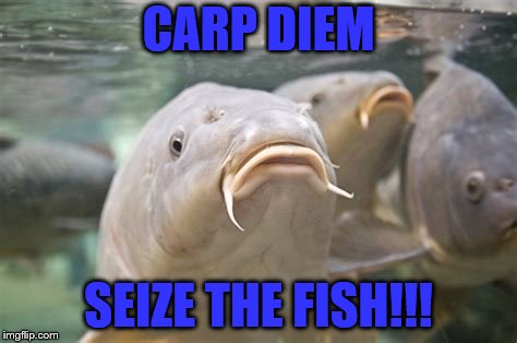 CARP DIEM SEIZE THE FISH!!! | made w/ Imgflip meme maker