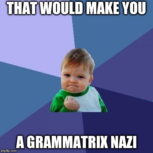 Success Kid Meme | THAT WOULD MAKE YOU A GRAMMATRIX NAZI | image tagged in memes,success kid | made w/ Imgflip meme maker