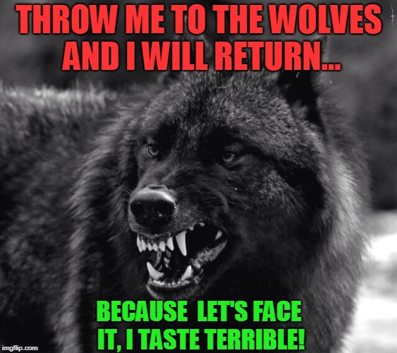 Throw me to the wolves! And I shall return!  | THROW ME TO THE WOLVES AND I WILL RETURN... BECAUSE  LET'S FACE IT, I TASTE TERRIBLE! | image tagged in wolf,nixieknox | made w/ Imgflip meme maker