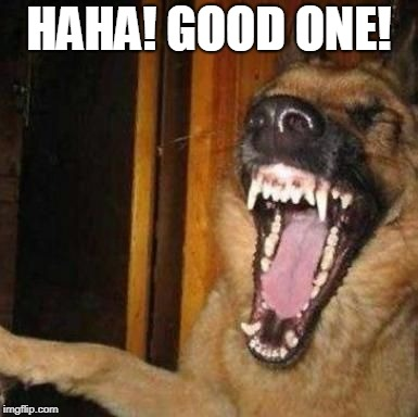 Laughing Dog | HAHA! GOOD ONE! | image tagged in laughing dog | made w/ Imgflip meme maker