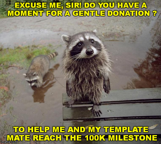 please | EXCUSE ME, SIR! DO YOU HAVE A   MOMENT FOR A GENTLE DONATION ? TO HELP ME AND MY TEMPLATE MATE REACH THE 100K MILESTONE | image tagged in milestone,100k points,cute racoon | made w/ Imgflip meme maker