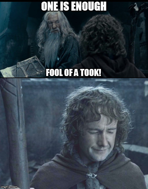 ONE IS ENOUGH FOOL OF A TOOK! | made w/ Imgflip meme maker