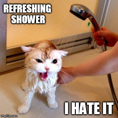 REFRESHING SHOWER I HATE IT | made w/ Imgflip meme maker