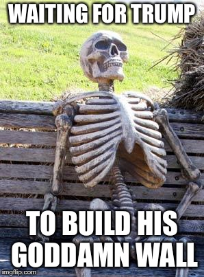 Waiting Skeleton Meme | WAITING FOR TRUMP TO BUILD HIS GO***MN WALL | image tagged in memes,waiting skeleton | made w/ Imgflip meme maker