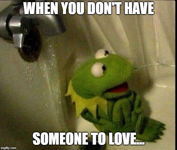 Sad Kermit | WHEN YOU DON'T HAVE SOMEONE TO LOVE... | image tagged in sad kermit | made w/ Imgflip meme maker