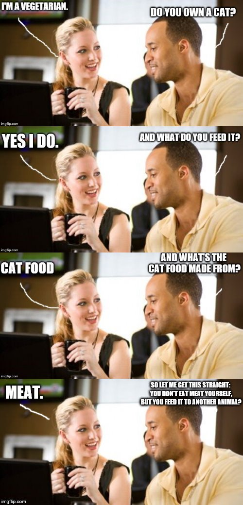 Vegetarians' Folly. | MEAT. SO LET ME GET THIS STRAIGHT: YOU DON'T EAT MEAT YOURSELF, BUT YOU FEED IT TO ANOTHER ANIMAL? | image tagged in man and woman,pet cat,vegetarian | made w/ Imgflip meme maker