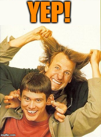 DUMB and dumber | YEP! | image tagged in dumb and dumber | made w/ Imgflip meme maker