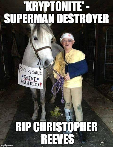 Buckaroo Bonzai | 'KRYPTONITE' - SUPERMAN DESTROYER RIP CHRISTOPHER REEVES | image tagged in superman,my little pony,puns | made w/ Imgflip meme maker