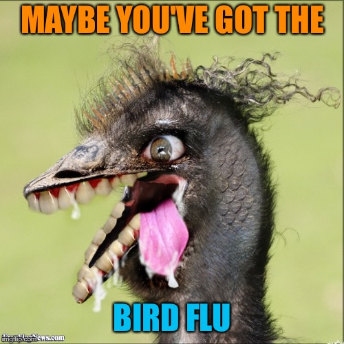 MAYBE YOU'VE GOT THE BIRD FLU | made w/ Imgflip meme maker