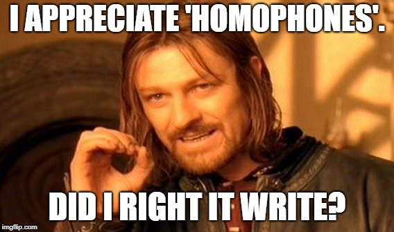 One Does Not Simply Meme | I APPRECIATE 'HOMOPHONES'. DID I RIGHT IT WRITE? | image tagged in memes,one does not simply | made w/ Imgflip meme maker