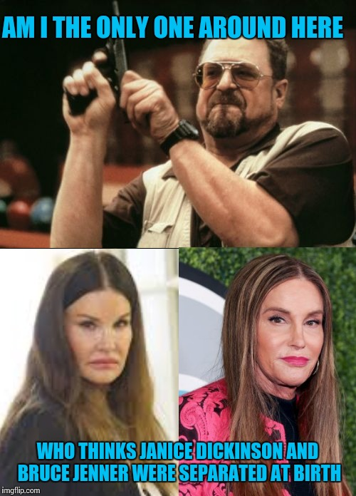 AM I THE ONLY ONE AROUND HERE WHO THINKS JANICE DICKINSON AND BRUCE JENNER WERE SEPARATED AT BIRTH | image tagged in am i the only one around here,caitlyn jenner,bruce jenner,ugly twins | made w/ Imgflip meme maker