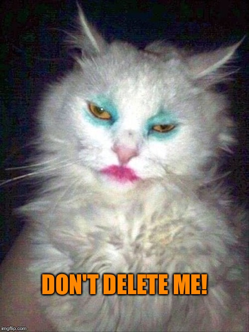 DON'T DELETE ME! | made w/ Imgflip meme maker