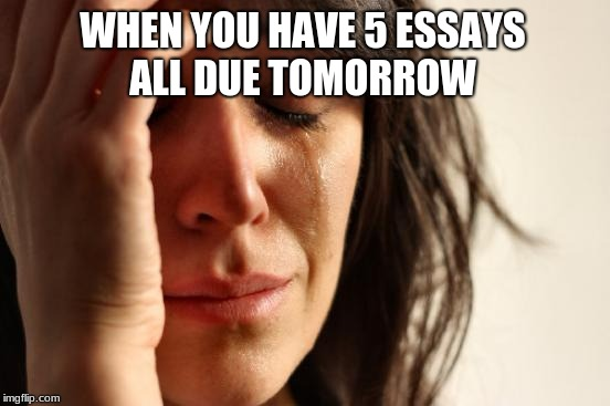 First World Problems Meme | WHEN YOU HAVE 5 ESSAYS ALL DUE TOMORROW | image tagged in memes,first world problems | made w/ Imgflip meme maker