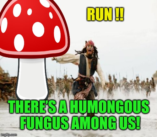 RUN !! THERE'S A HUMONGOUS FUNGUS AMONG US! | made w/ Imgflip meme maker