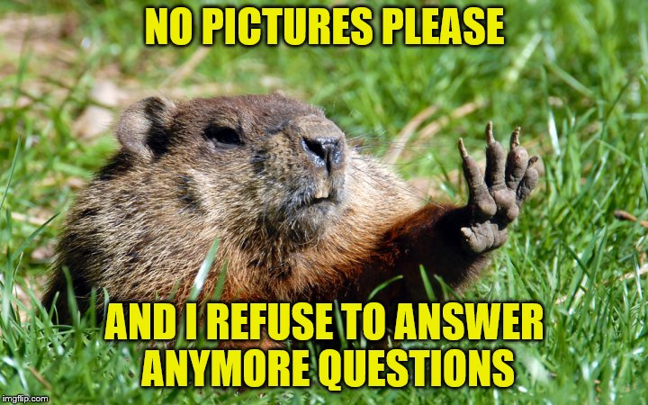 NO PICTURES PLEASE AND I REFUSE TO ANSWER ANYMORE QUESTIONS | made w/ Imgflip meme maker