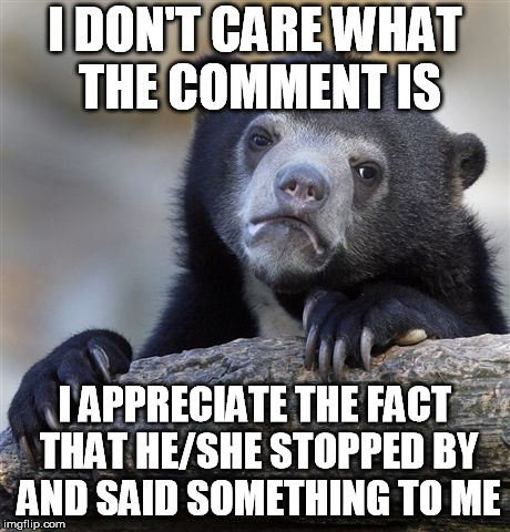 Confession Bear Meme | I DON'T CARE WHAT THE COMMENT IS I APPRECIATE THE FACT THAT HE/SHE STOPPED BY AND SAID SOMETHING TO ME | image tagged in memes,confession bear | made w/ Imgflip meme maker