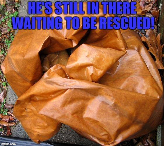 HE'S STILL IN THERE WAITING TO BE RESCUED! | image tagged in wet paper bag | made w/ Imgflip meme maker