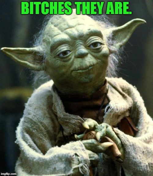 Star Wars Yoda Meme | B**CHES THEY ARE. | image tagged in memes,star wars yoda | made w/ Imgflip meme maker